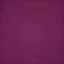 Fuchsia Decorator Fabric by Maxwell