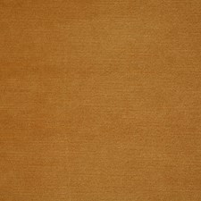 Gold Solid Decorator Fabric by Pindler