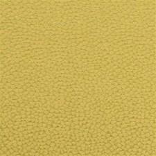 Fern Silk Decorator Fabric by G P & J Baker