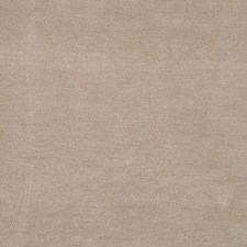 Putty Solids Decorator Fabric by G P & J Baker
