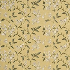 Mimosa/Ivory Botanical Decorator Fabric by G P & J Baker