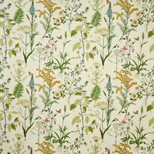 Verbena Traditional Decorator Fabric by Pindler