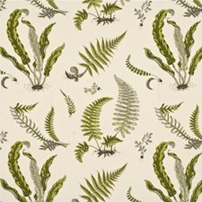 Lime/Grey Print Decorator Fabric by G P & J Baker