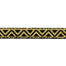 Braids Black and Dijon Trim by Brunschwig & Fils