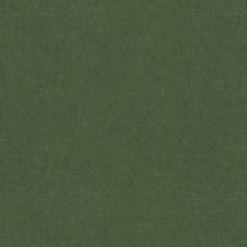 Bayleaf Solids Decorator Fabric by Brunschwig & Fils