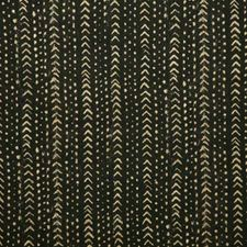 Ebony Ethnic Decorator Fabric by Pindler
