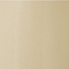 Gold Dust Metallic Decorator Fabric by Kravet