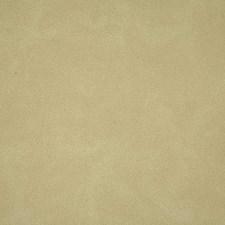 Limestone Decorator Fabric by Pindler