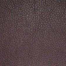 Grape Decorator Fabric by Maxwell