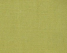 Pear Decorator Fabric by Scalamandre