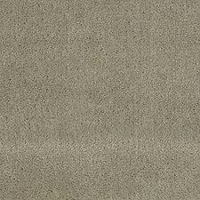 Dewdrop Decorator Fabric by Scalamandre