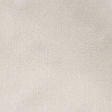 Putty Decorator Fabric by Scalamandre