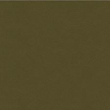 Green/Sage/Olive Green Solids Decorator Fabric by Kravet