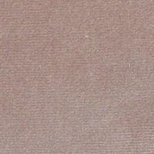 Tortora Decorator Fabric by Scalamandre