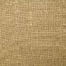 Acorn Solid Decorator Fabric by Pindler