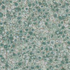 Capri Decorator Fabric by Robert Allen /Duralee