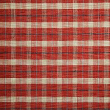 Pompeii Check Decorator Fabric by Pindler