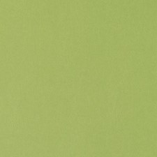 Apple Green Solid Decorator Fabric by Duralee