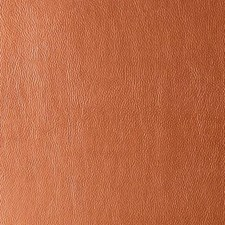 Adobe Faux Leather Decorator Fabric by Duralee