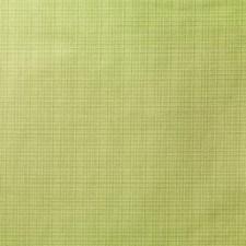 Prairie Plaid Decorator Fabric by Duralee