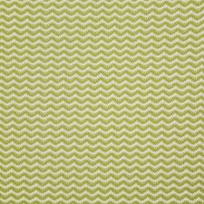 Sprout Decorator Fabric by Pindler
