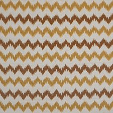 Desert Decorator Fabric by Silver State