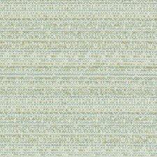 Fern Basketweave Decorator Fabric by Duralee
