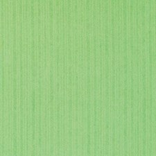 Peridot Chenille Decorator Fabric by Duralee