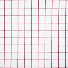 Peppermint Check Decorator Fabric by Pindler