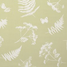 Green Decorator Fabric by Clarke & Clarke
