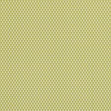 Citrus Decorator Fabric by Clarke & Clarke