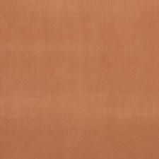 Tamarind Decorator Fabric by Clarke & Clarke