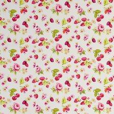 Fruits Raspberry Decorator Fabric by Clarke & Clarke