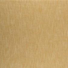 Turmeric Solids Decorator Fabric by Clarke & Clarke