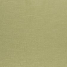 Pistachio Solids Decorator Fabric by Clarke & Clarke