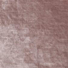 Blush Solid Decorator Fabric by Clarke & Clarke