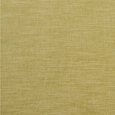 Citron Solids Decorator Fabric by Clarke & Clarke