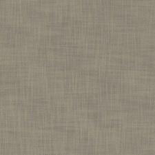 Mink Decorator Fabric by Clarke & Clarke