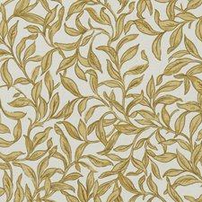 Stone Decorator Fabric by Clarke & Clarke