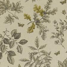 Charcoal/Ochre Decorator Fabric by Clarke & Clarke