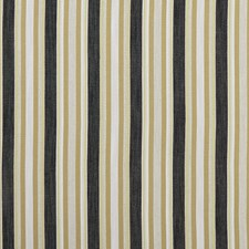 Charcoal/Ochre Decorator Fabric by Clarke & Clarke