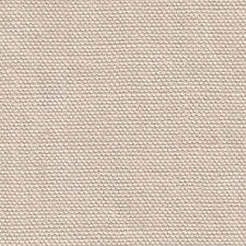 Petrel Decorator Fabric by Scalamandre