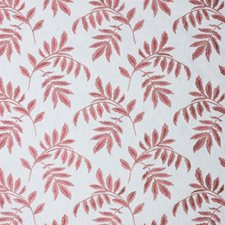 Rose Quartz Decorator Fabric by RM Coco