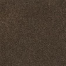 Brunette Decorator Fabric by Silver State