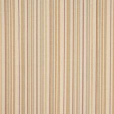 Sugar Cane Decorator Fabric by RM Coco