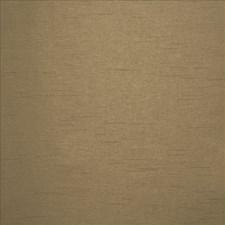 Camelback Decorator Fabric by Kasmir