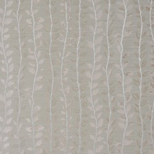 Rosewater Decorator Fabric by Maxwell
