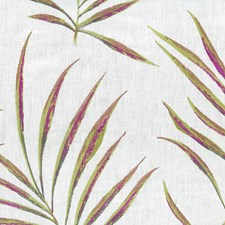 Lavender Decorator Fabric by Stout
