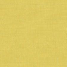 Light Green/Light Yellow Solids Decorator Fabric by Kravet