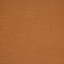 Butterscotch Decorator Fabric by RM Coco